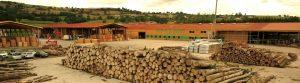 Découvrez l'historique de la société BARONNIER | Palettes du Lyonnais, créée en 1960 par Henri BARONNIER, spécialisée dans la fabrication de palettes bois.